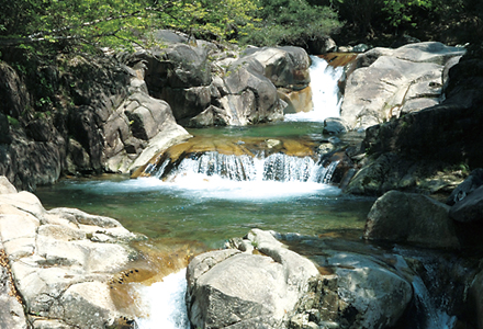 一億年前の地層から湧き出た天然軟水使用!